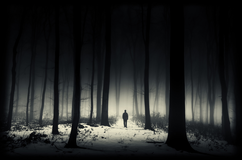 lonely person in a snowy forest at night